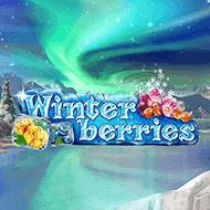 yggdrasil/Winterberries