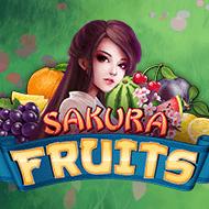 amatic/SakuraFruits