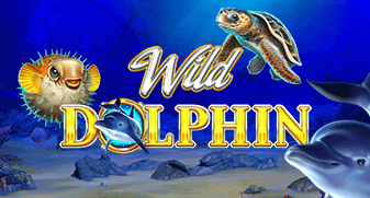 gameart/WildDolphin