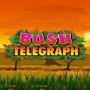 quickfire/MGS_BushTelegraph