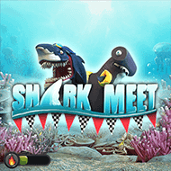 booming/SharkMeet