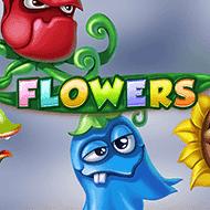 netent/flowers_not_mobile_sw