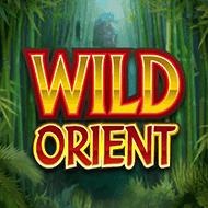 quickfire/MGS_WildOrient