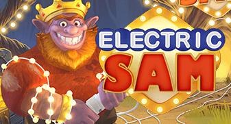 elk/ElectricSam